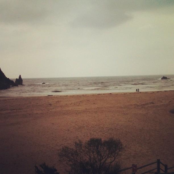 Playa La Franca #104 - La franca