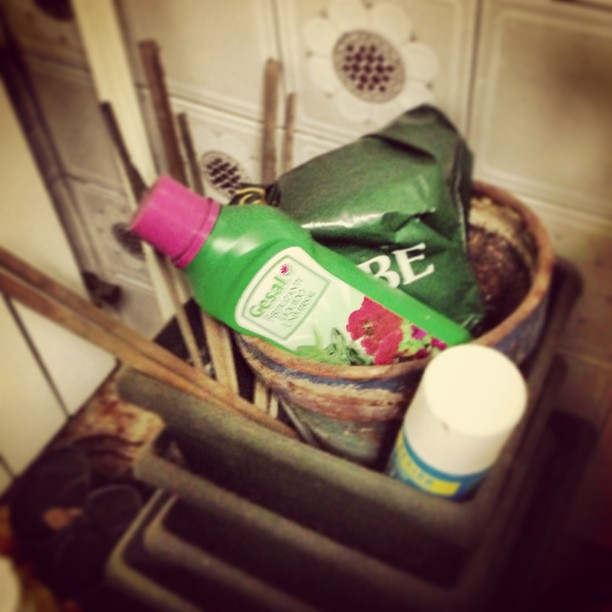 Kit para las plantas #instagram -