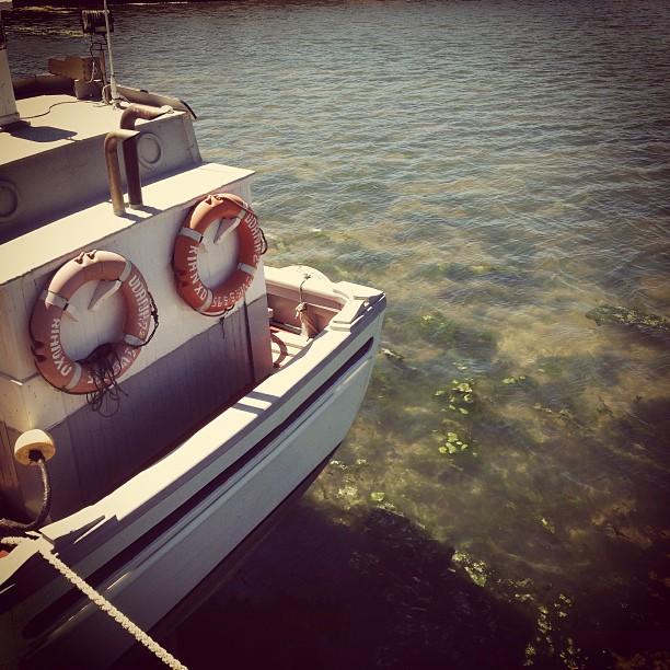 Barco #instagram -