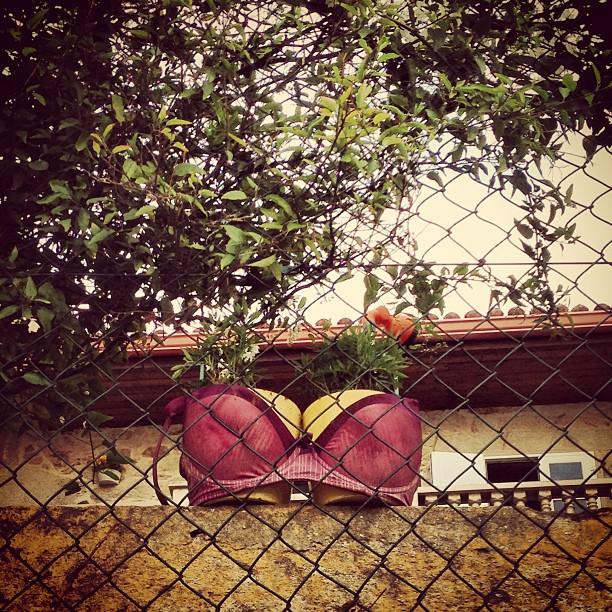 Cosas que te encuentras por los balcones de las calles #nocheloca #instagram
