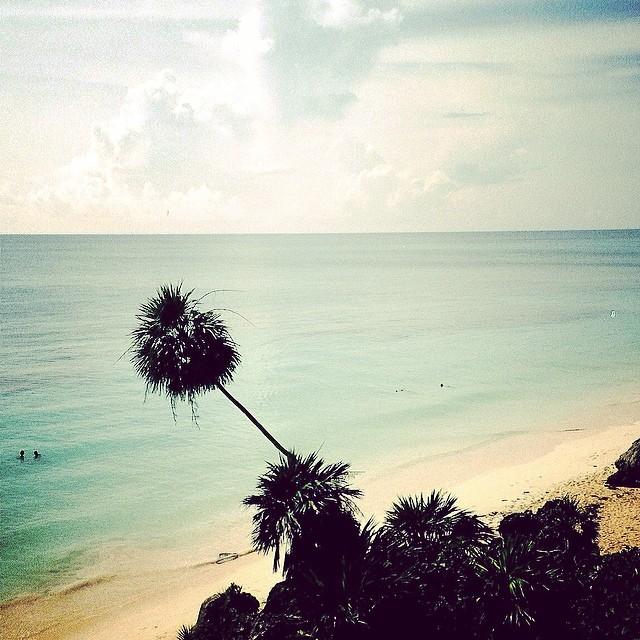 Caribe #instagram -