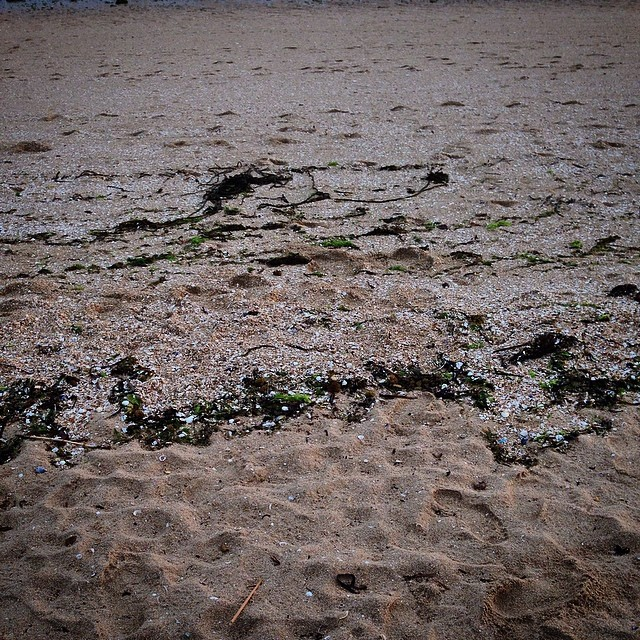 Una lágrima cayó en la arena #playa #instagram -
