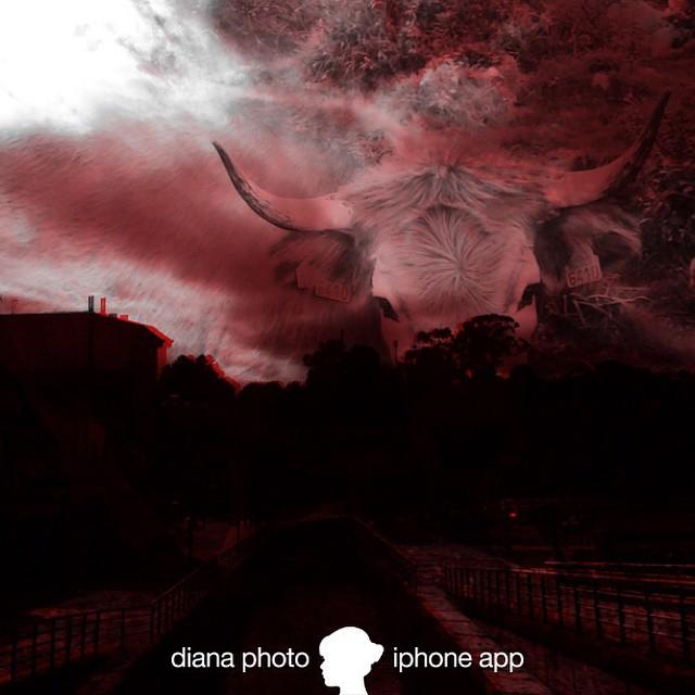DianaPhotoApp DoubleExposure -