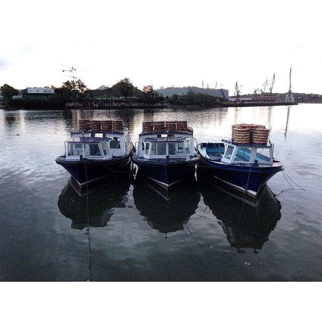 Barcas en la ría #erandio #igersbilbao #instagram -