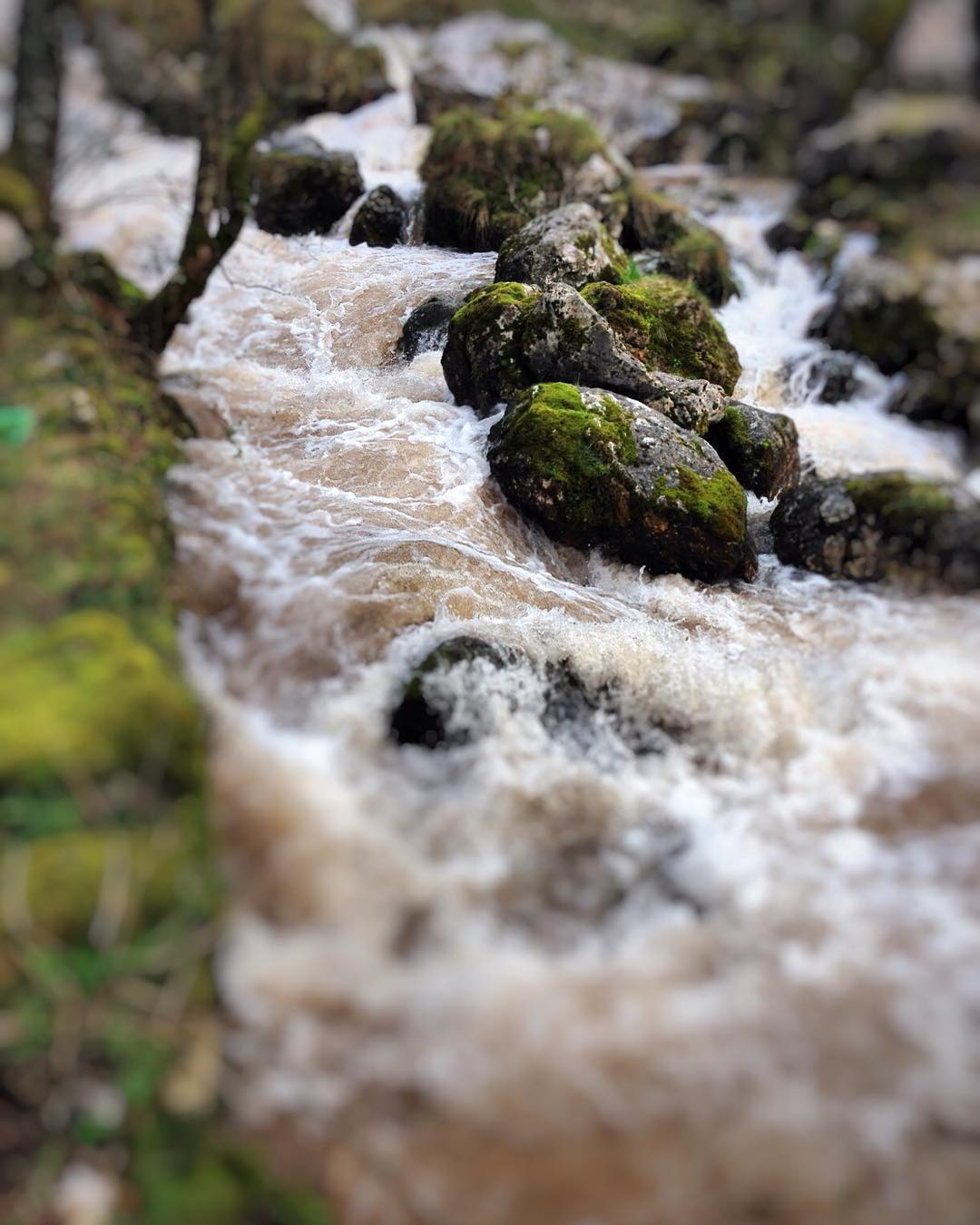 Agua que corre déjala correr -