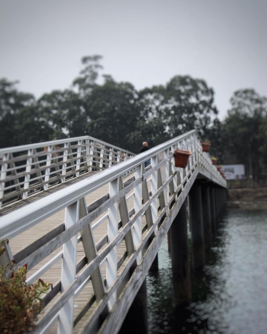 Puentes -