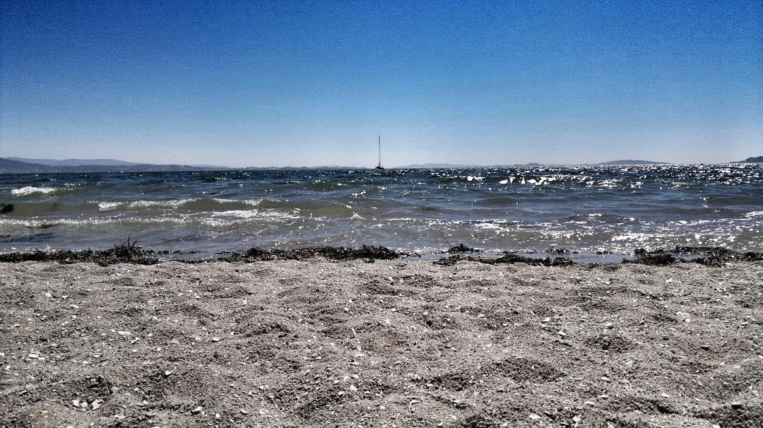 Mirando al mar - Mirando Al Mar