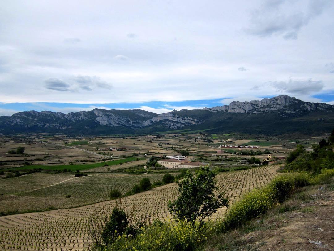La Rioja Alavesa en primavera - La Rioja Alavesa En Primavera