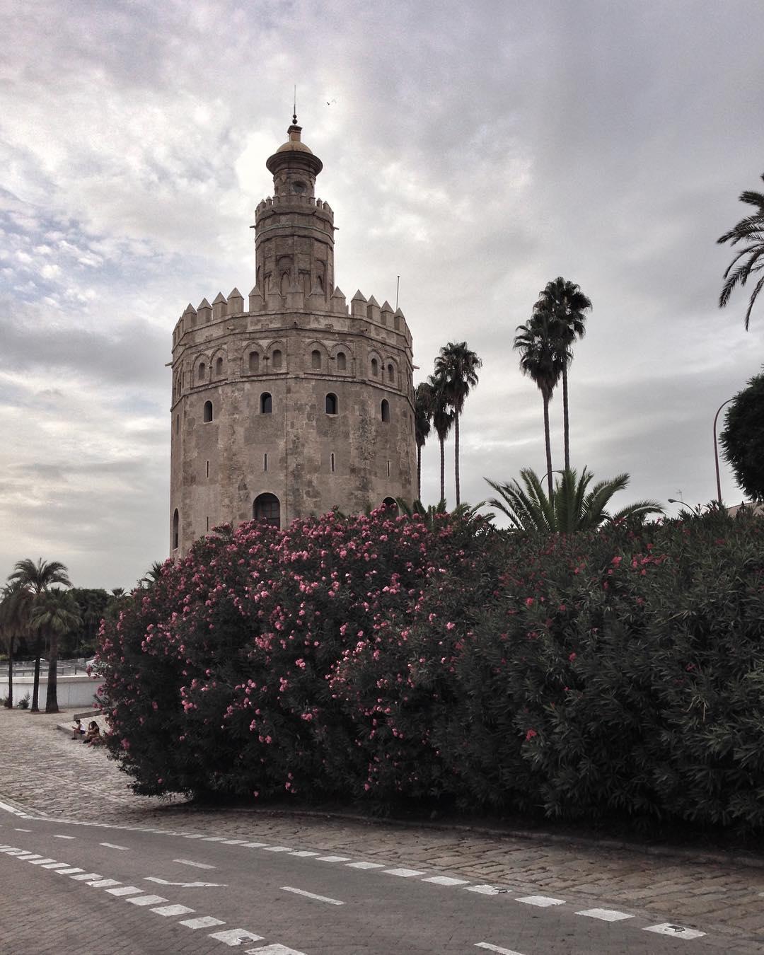 Torre del oro - Torre Del Oro