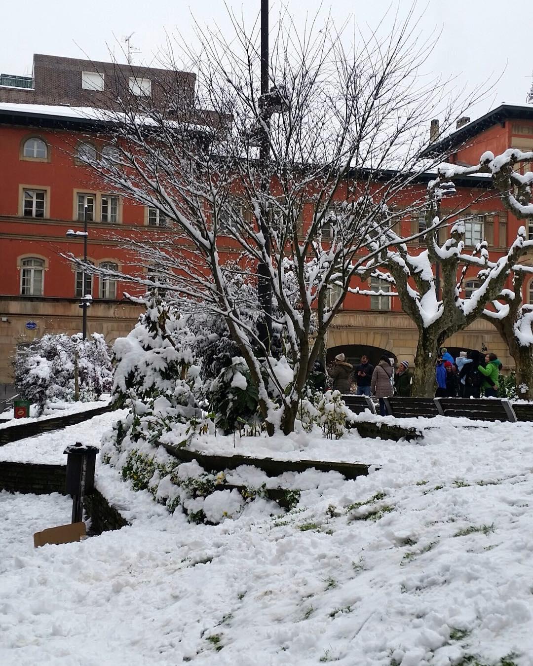 Aceves nieva!!! - Aceves Nieva!!!