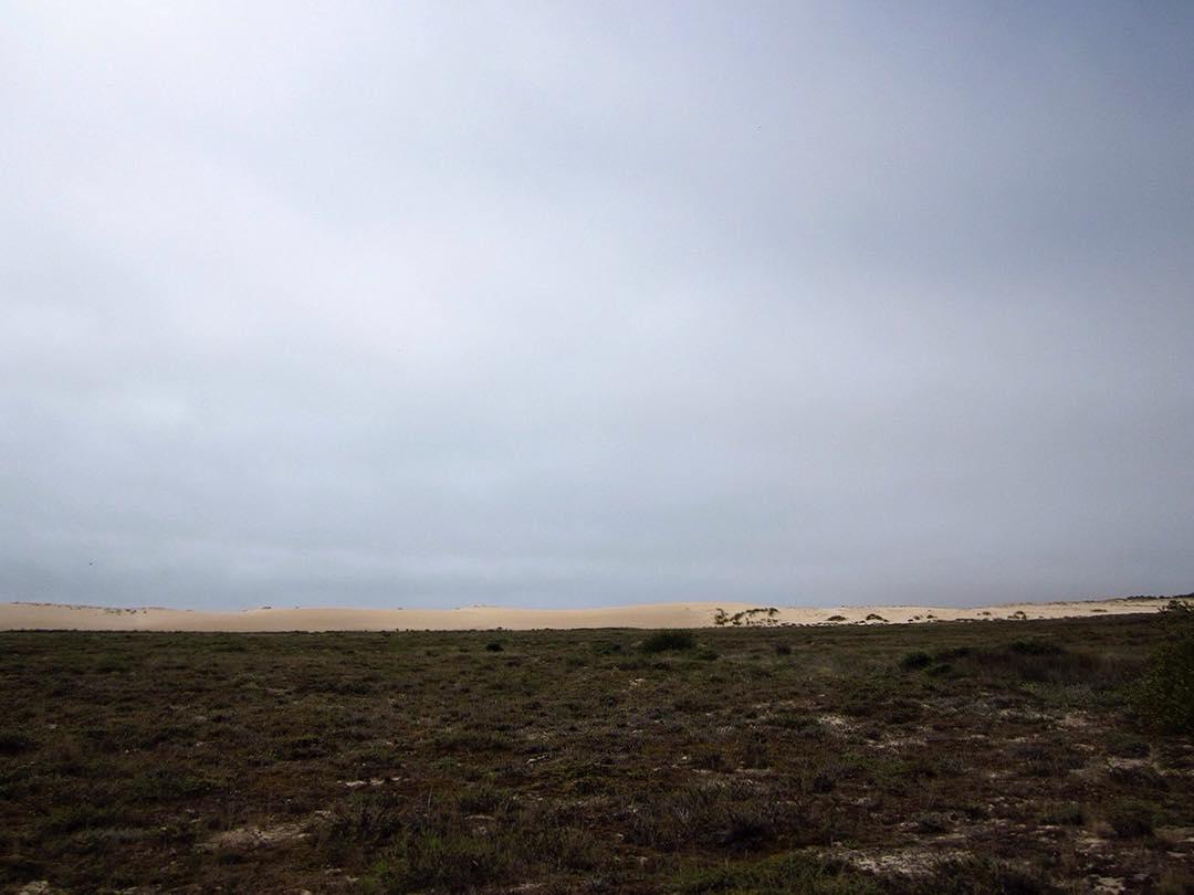 Corrubedo dunas - Corrubedo Dunas
